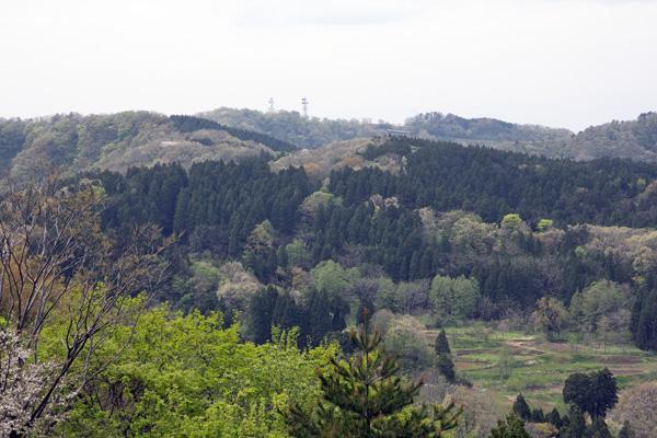 春日山城跡から1