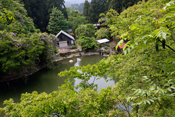 月水の池2