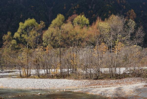 中州 (2)