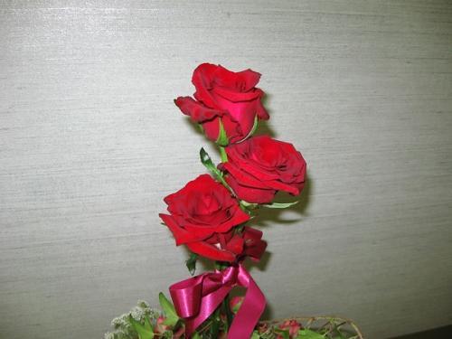 薔薇_トピアリー2