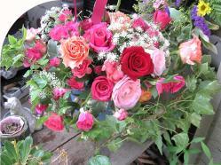 翌日の薔薇トピアリー3