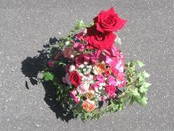 翌日の薔薇トピアリー6