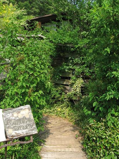 ターシャの庭2