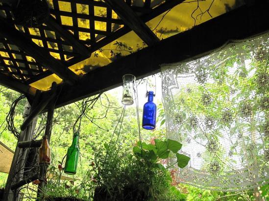 ターシャの庭6