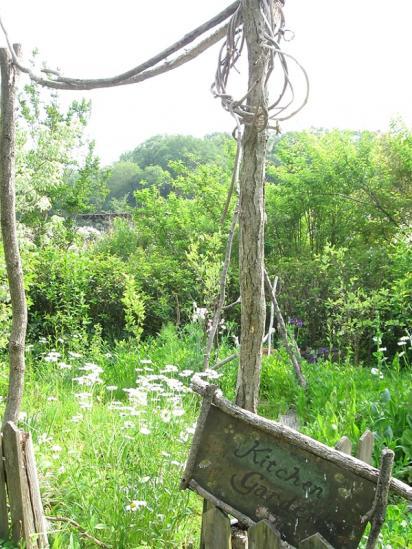 ターシャの庭8