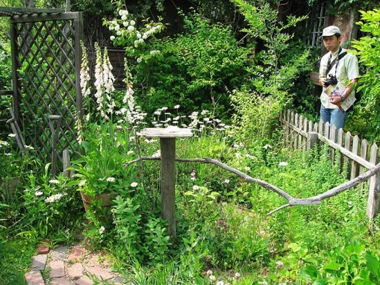 ターシャの庭10