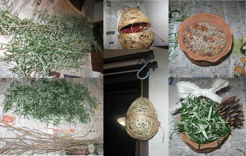 花台の片付け8_ローズマリー
