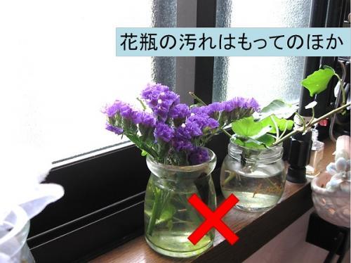 花瓶の汚れはもってのほか