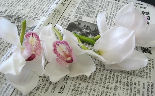 フラワーフローター_花材2