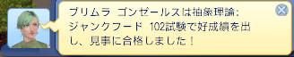 bandicam 2013-06-01 18-43-54-455