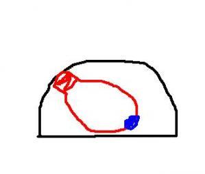 センサー電球