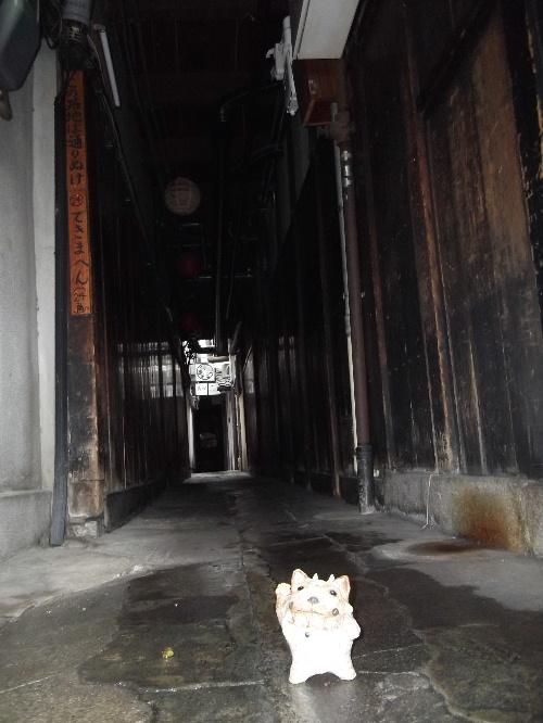 2013春の京都 013