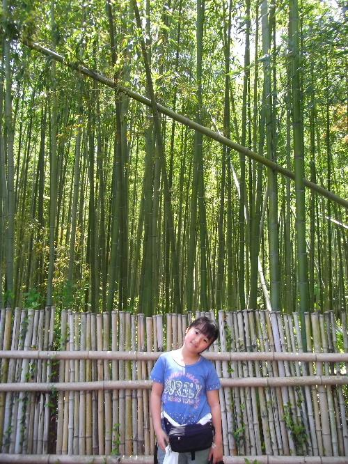 2013春の京都 040