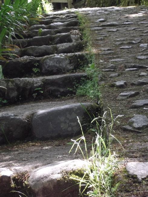 2013春の京都 076