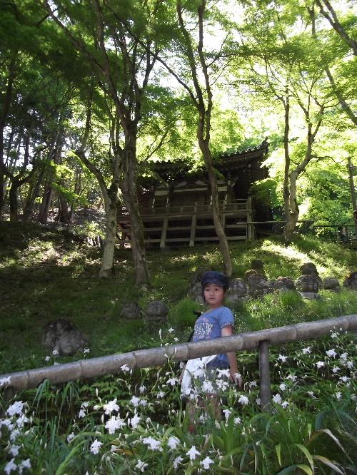 2013春の京都 081