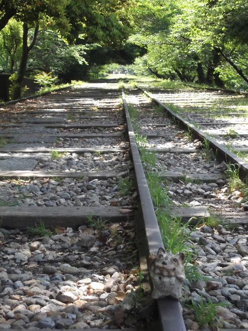 2013春の京都 113