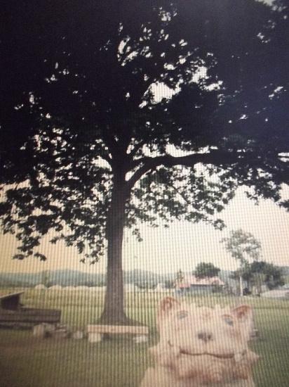 2013 夏の取材信州旅行 085