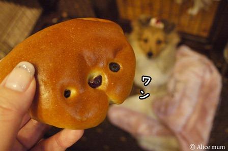 ①こいぬパンeditmini
