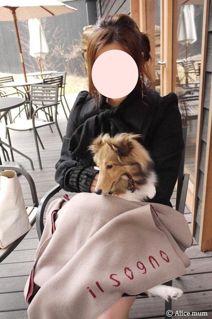 ⑳軽井沢mini