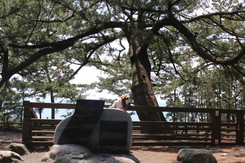 浜名湖療養旅6