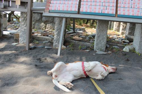 浜名湖療養旅11