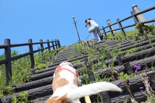 浜名湖療養旅12