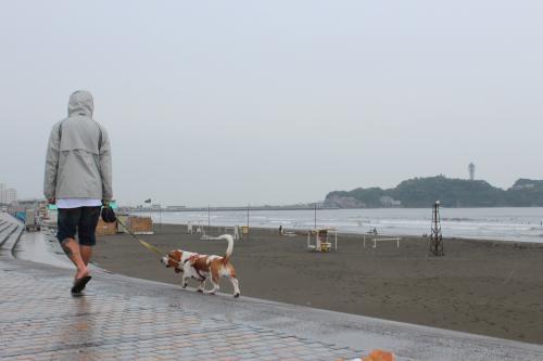 鵠沼海岸3