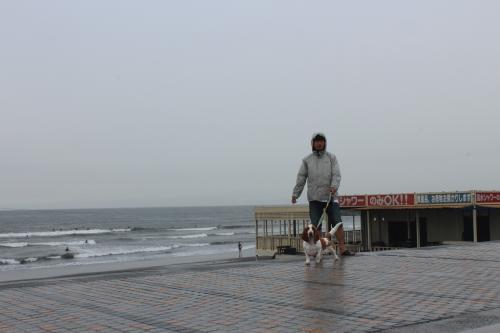 鵠沼海岸4