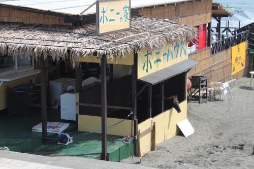 鵠沼海岸9