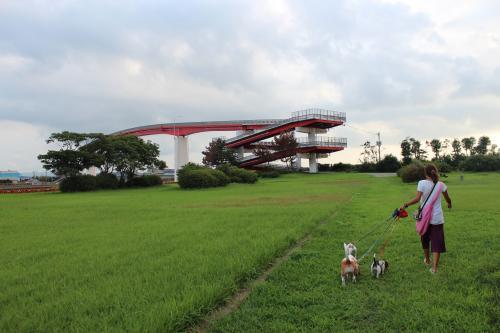 中島大橋7