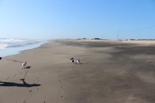 一松海岸リベンジ5