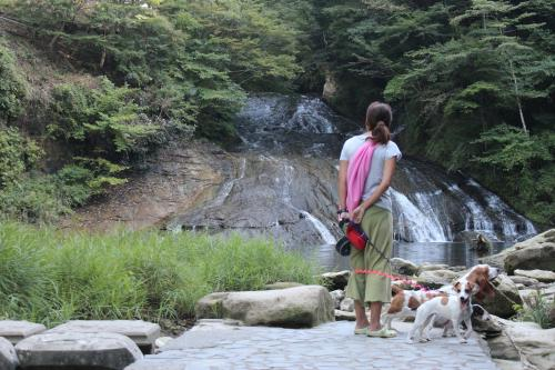 粟又の滝4