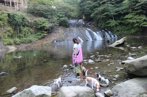 粟又の滝9