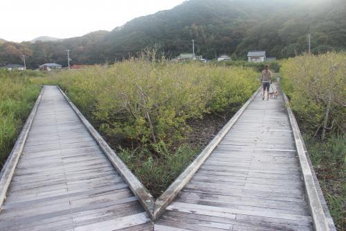 吉佐美大浜13
