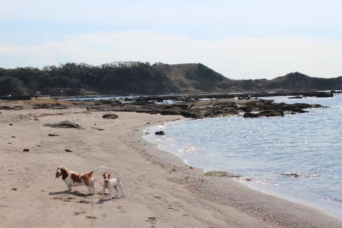 長浜海岸18