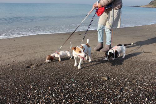 長浜海岸2