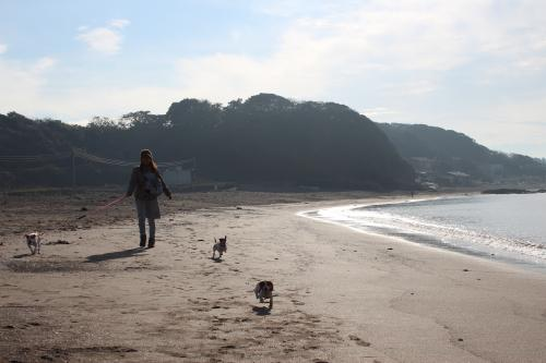 長浜海岸11