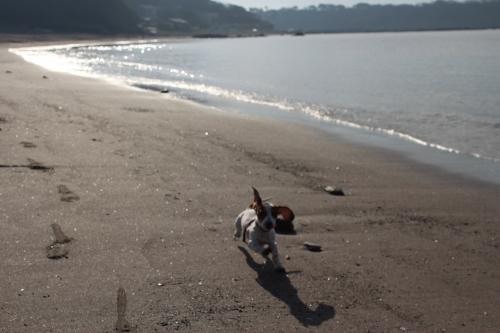 長浜海岸12