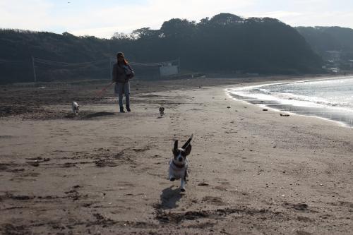 長浜海岸13