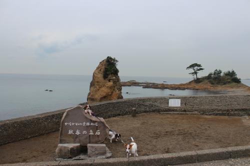 立石海岸2