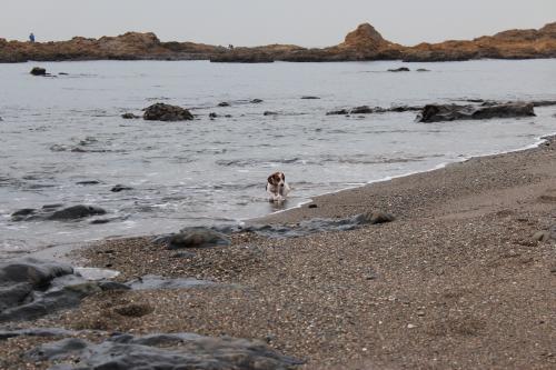 立石海岸4
