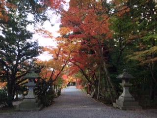 oharano2.jpg