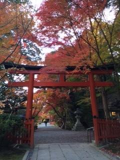 oharano3.jpg