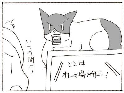 611-5.jpg