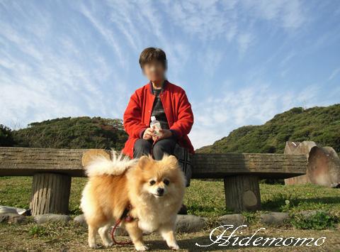 RICOH-R1 06.11.29.観音崎公園(もも) 019-1_edited-2
