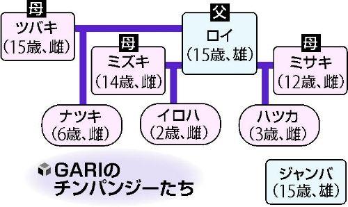 gari6.jpg