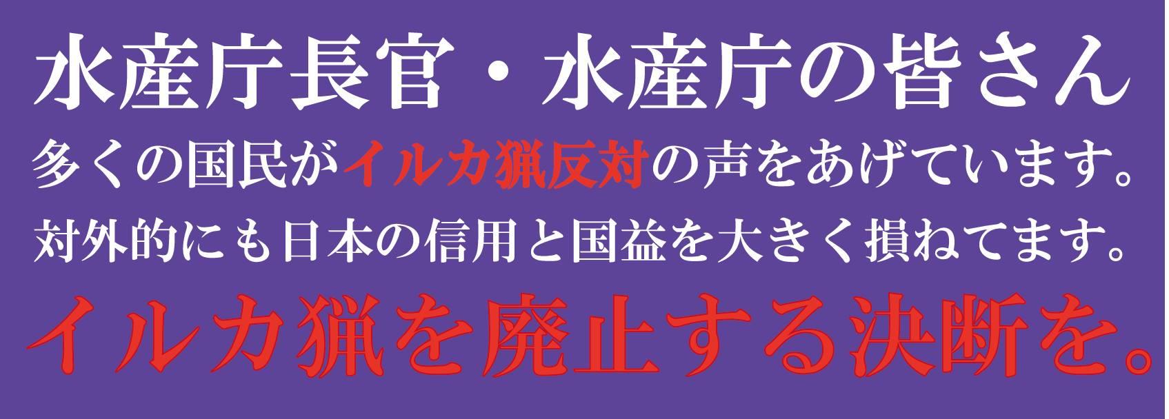 irukaryo_20131004040423f58.jpg