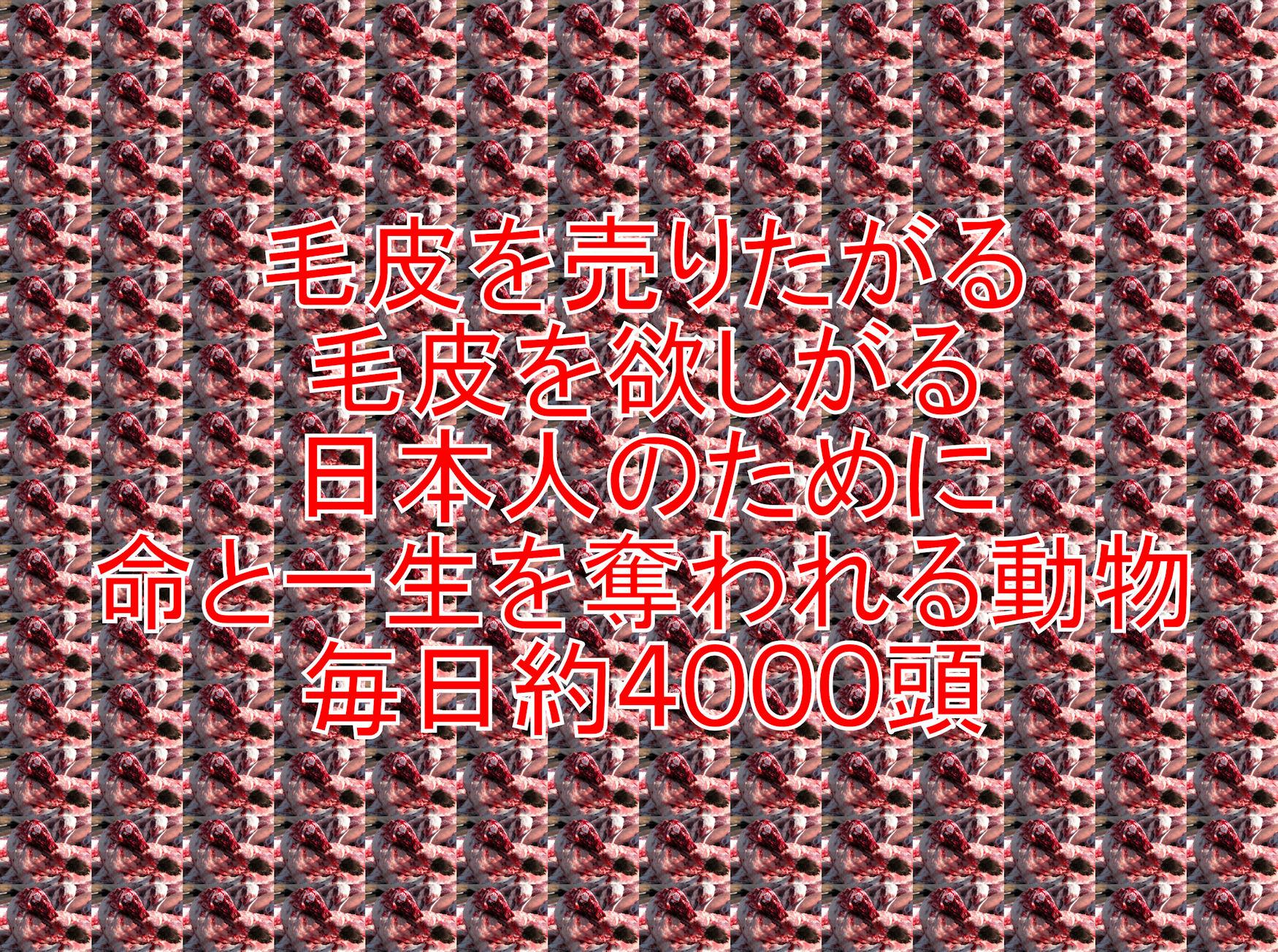 kegawas2_201308220053586f6.jpg