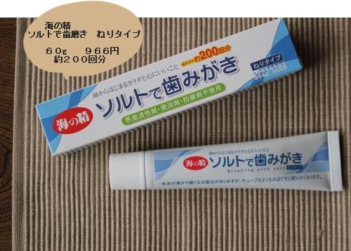 ソルトねり歯磨き1