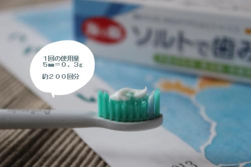 ソルトねり歯磨き3